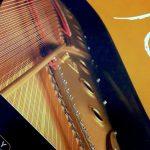 Synthogy Ivory:至高のピアノ音源