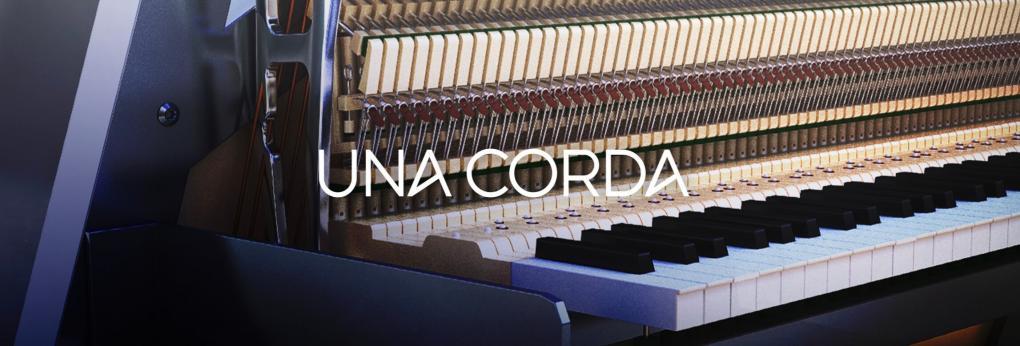 Native Instruments UNA CORDA